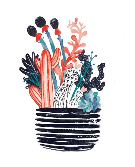 Various plants and flowers in a black flower pot
